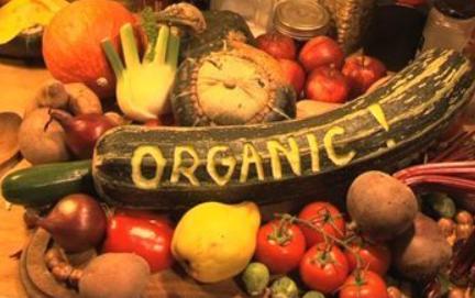 15 benefits of organic food!